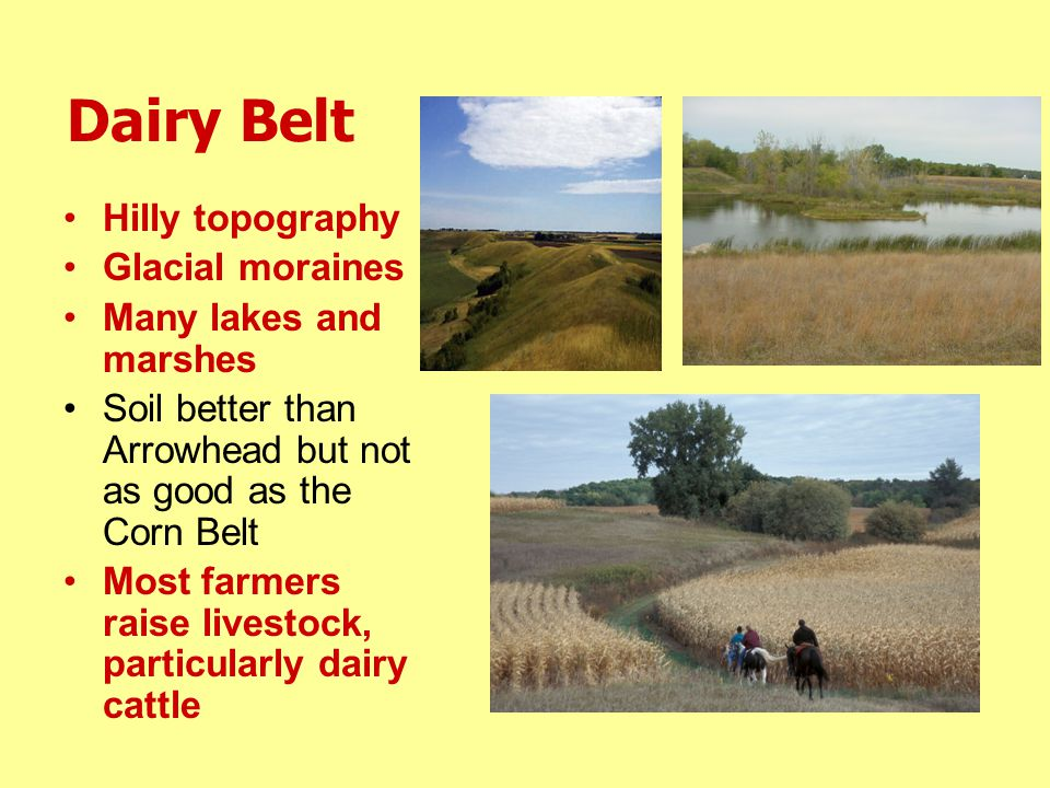 Dairy Belt Hilly topography Glacial moraines Many lakes and marshes