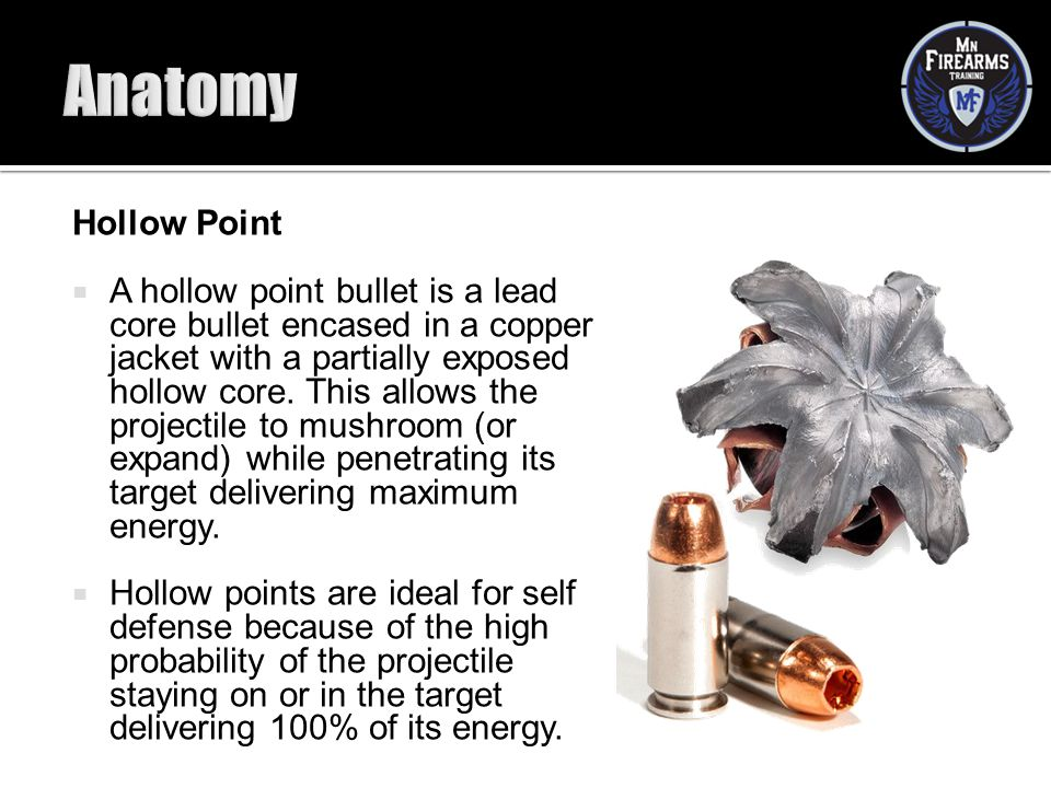 Anatomy Hollow Point.