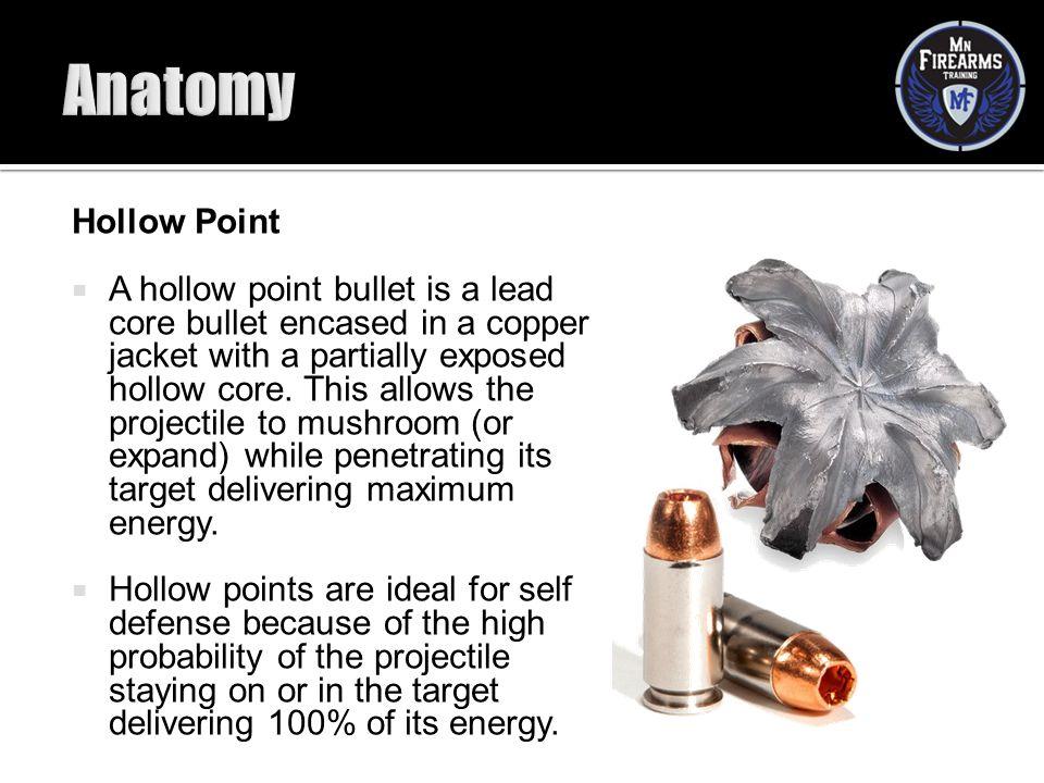 Anatomy Hollow Point.
