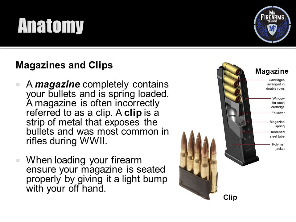 Anatomy Magazines and Clips