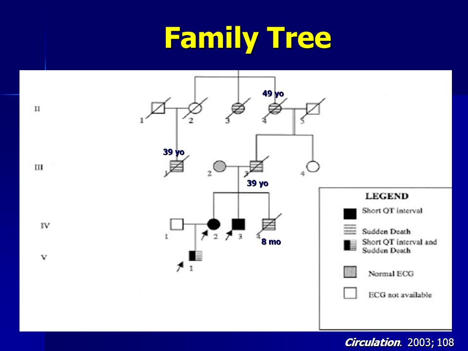 Family Tree 49 yo 39 yo 39 yo 8 mo Circulation. 2003; 108