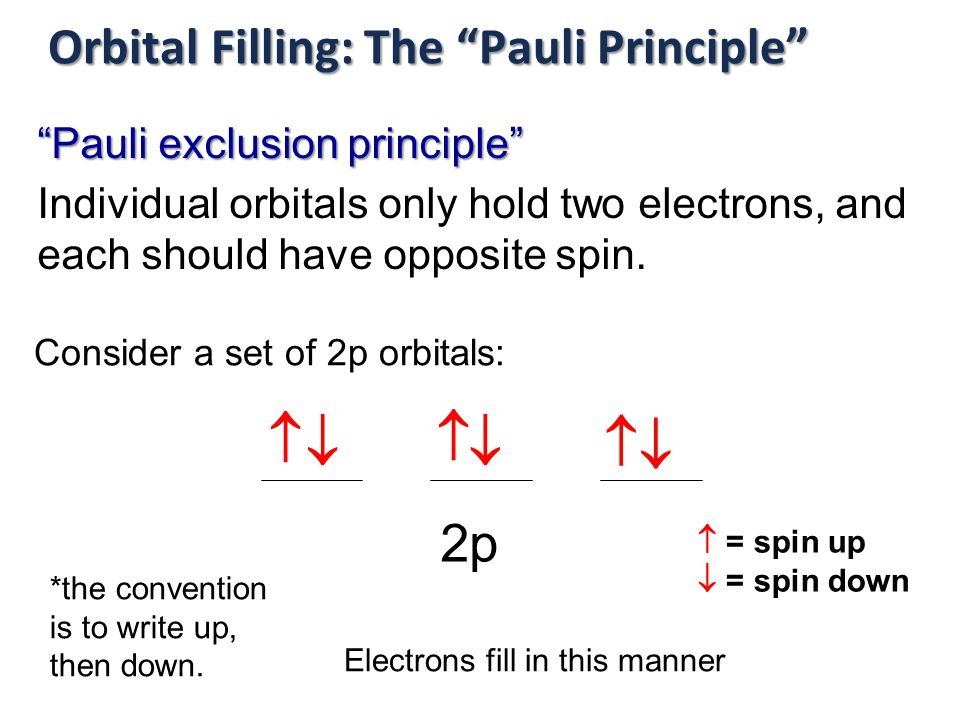 Orbital Filling: The Pauli Principle