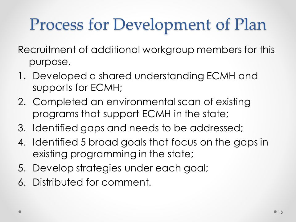 Process for Development of Plan