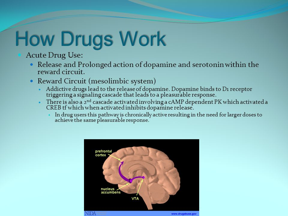 How Drugs Work Acute Drug Use: