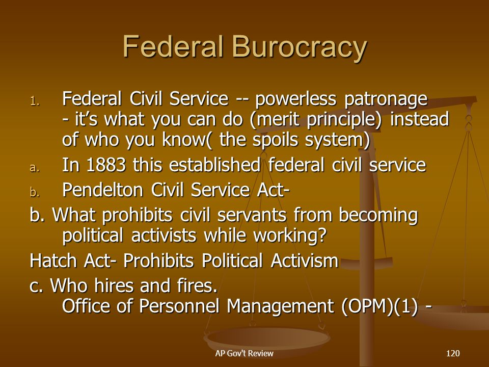 Federal Burocracy Federal Civil Service -- powerless patronage - it's what you can do (merit principle) instead of who you know( the spoils system)