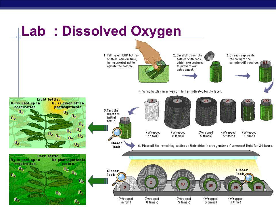 Lab : Dissolved Oxygen