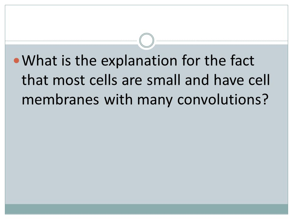 What is the explanation for the fact that most cells are small and have cell membranes with many convolutions