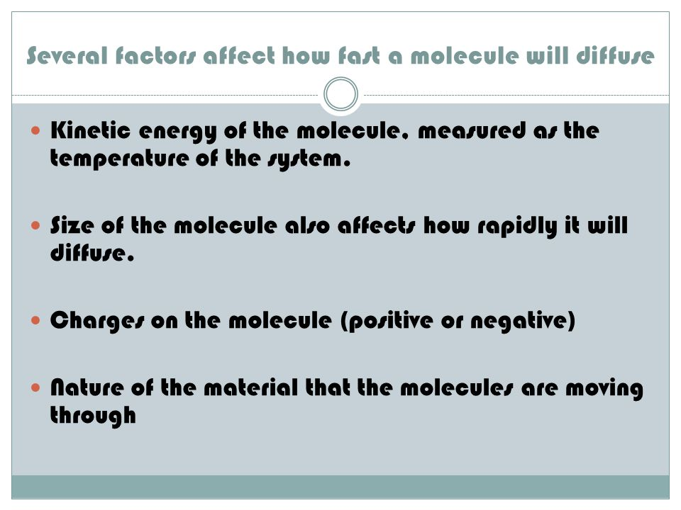 Several factors affect how fast a molecule will diffuse