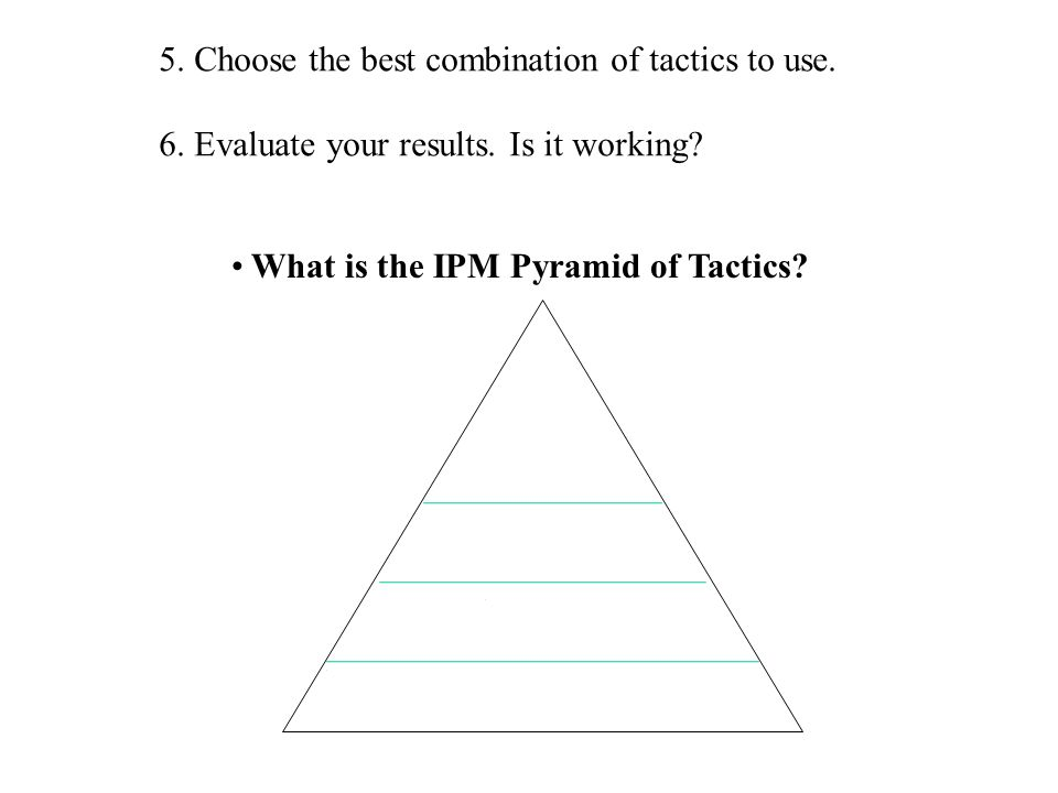 5. Choose the best combination of tactics to use.