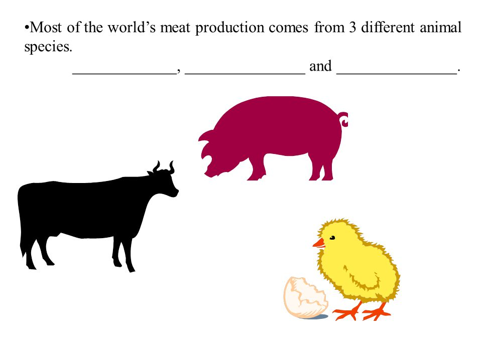 Most of the world's meat production comes from 3 different animal species.