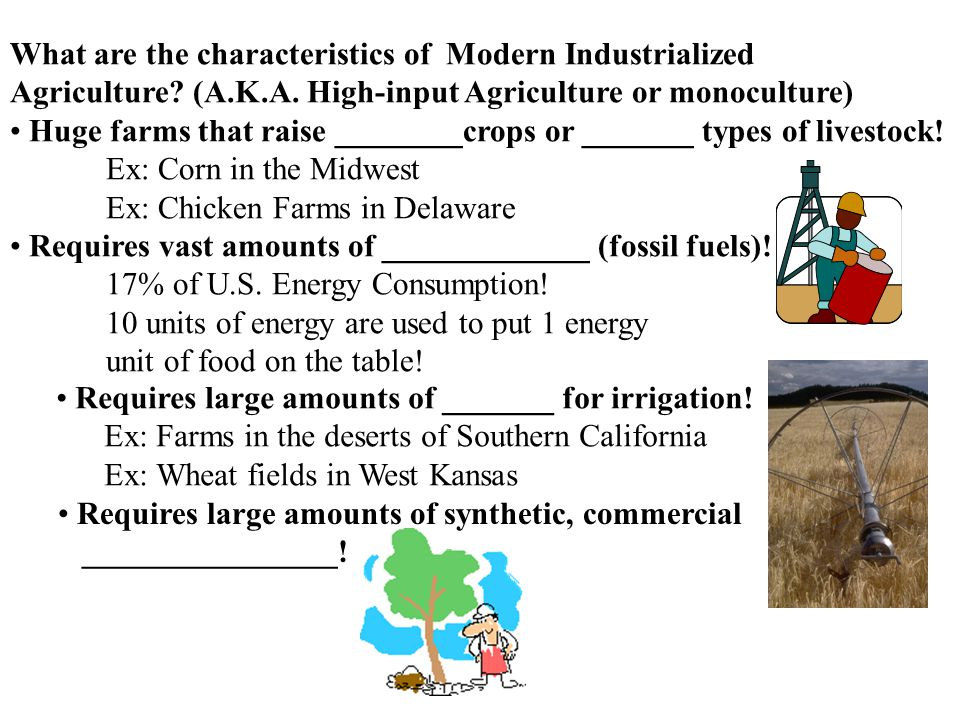 What are the characteristics of Modern Industrialized