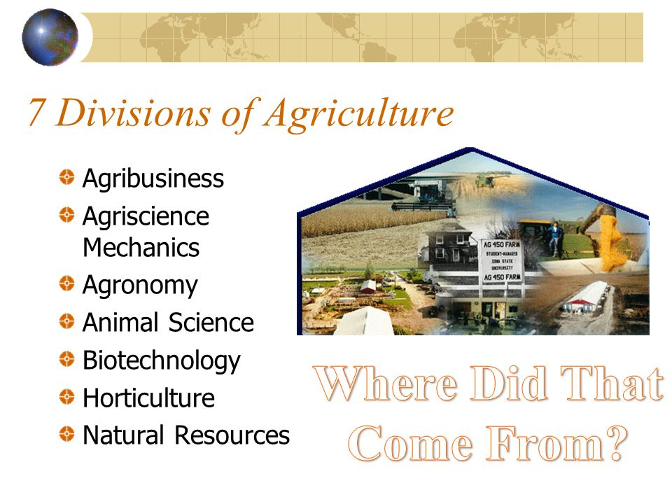 7 Divisions of Agriculture