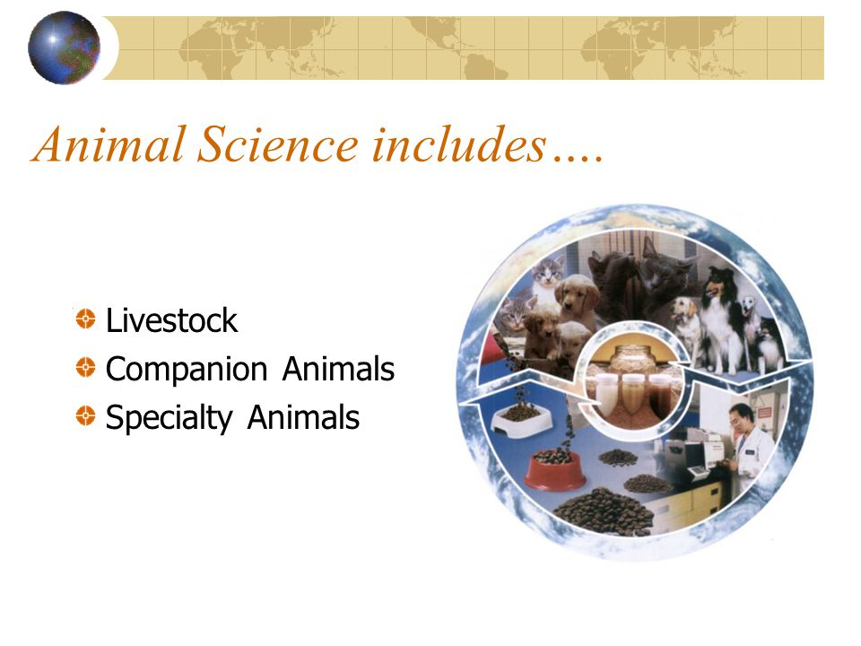 Animal Science includes….