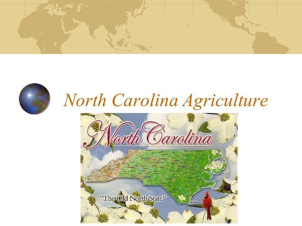 North Carolina Agriculture