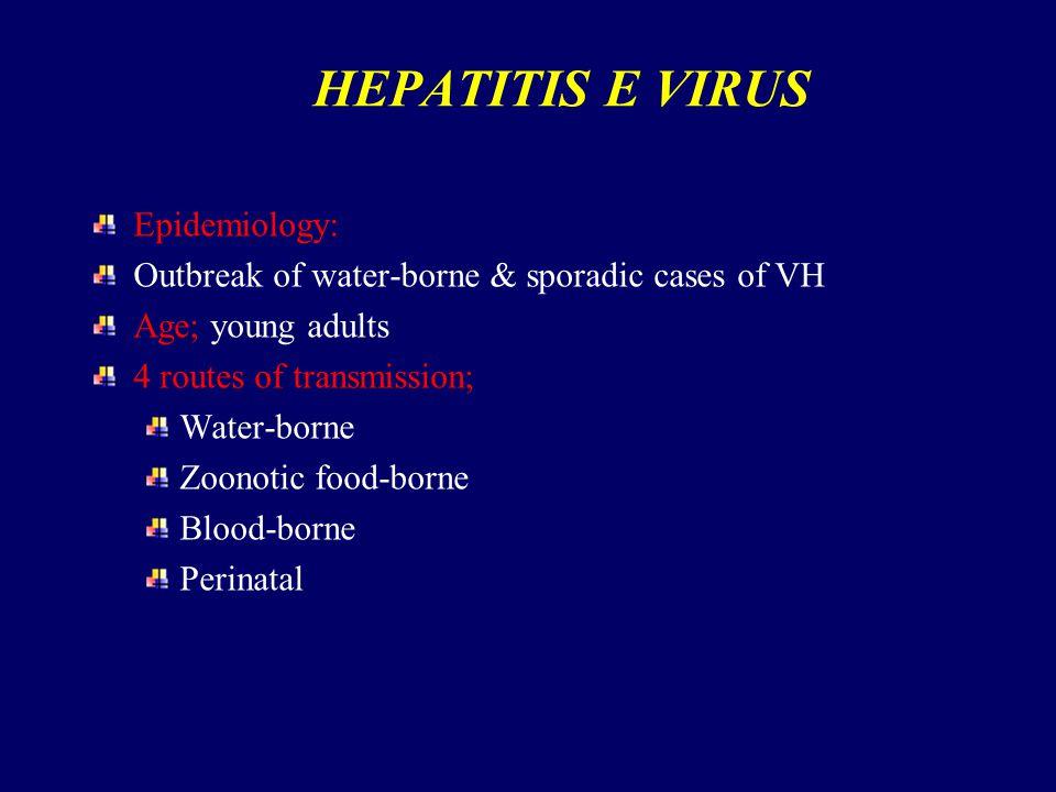 HEPATITIS E VIRUS Epidemiology: