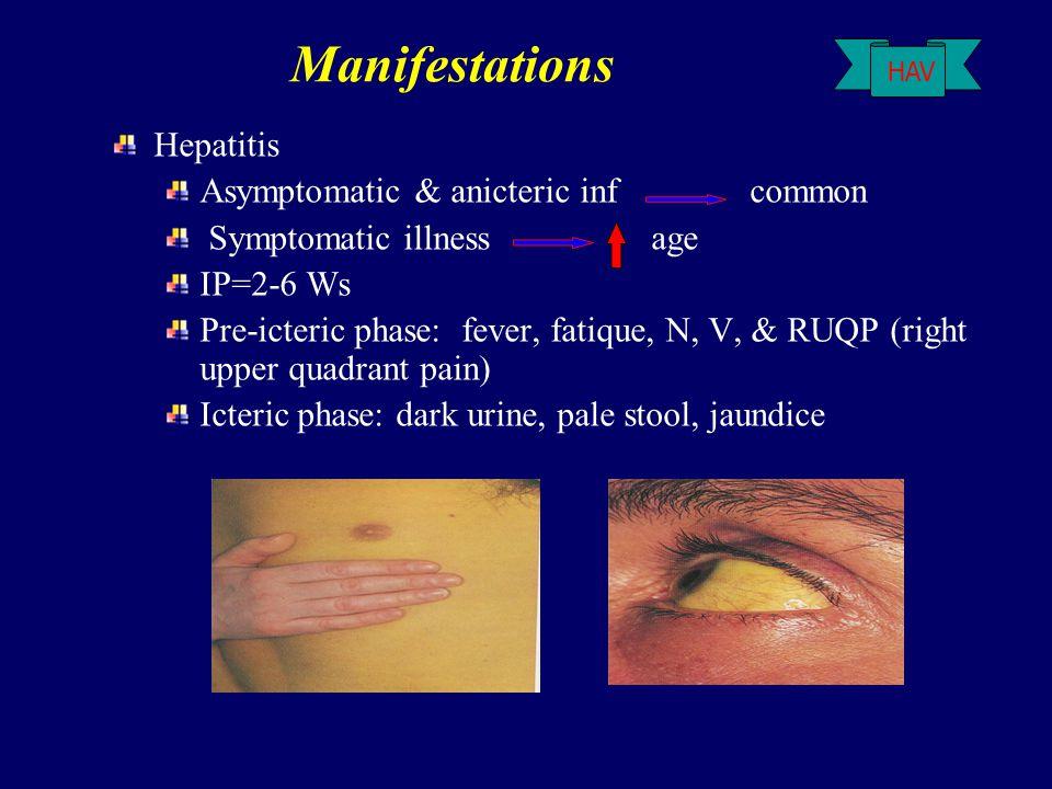 Manifestations Hepatitis Asymptomatic & anicteric inf common