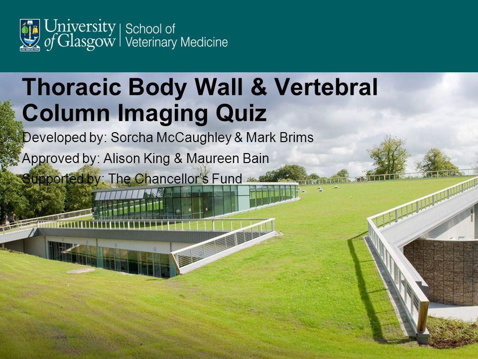 Thoracic Body Wall & Vertebral Column Imaging Quiz