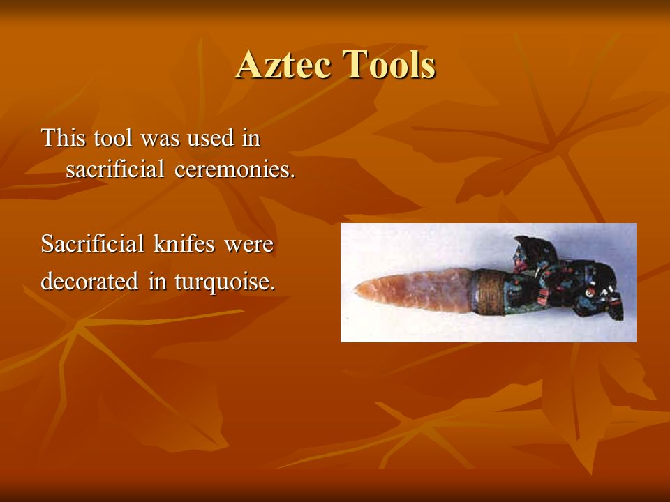 Aztec Tools This tool was used in sacrificial ceremonies.