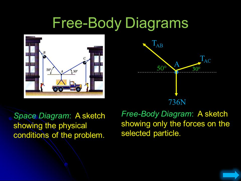 Free-Body Diagrams TAB TAC A 736N