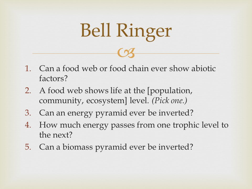 Bell Ringer Can a food web or food chain ever show abiotic factors