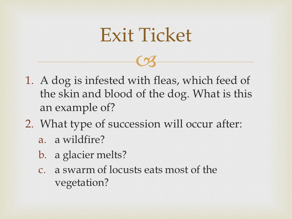 Exit Ticket A dog is infested with fleas, which feed of the skin and blood of the dog. What is this an example of