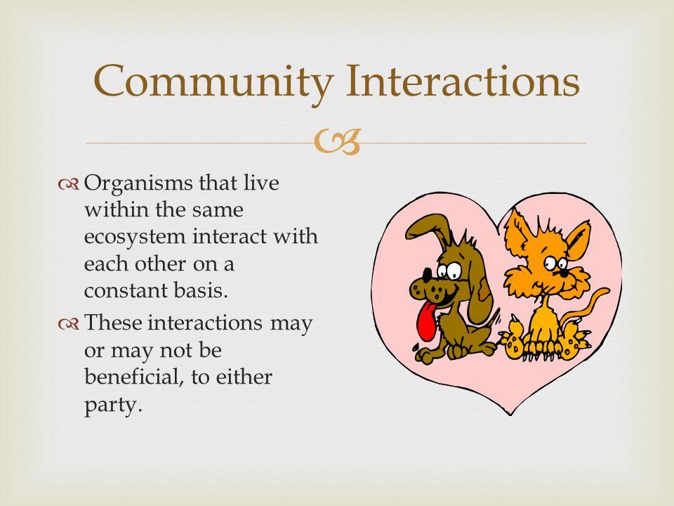 Community Interactions