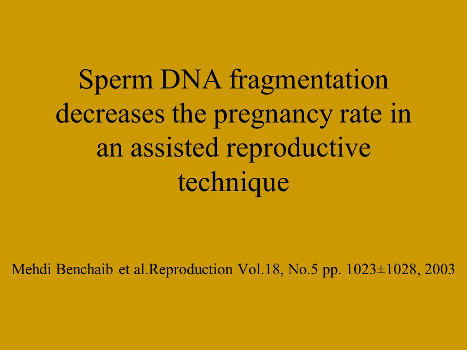 Mehdi Benchaib et al.Reproduction Vol.18, No.5 pp. 1023±1028, 2003