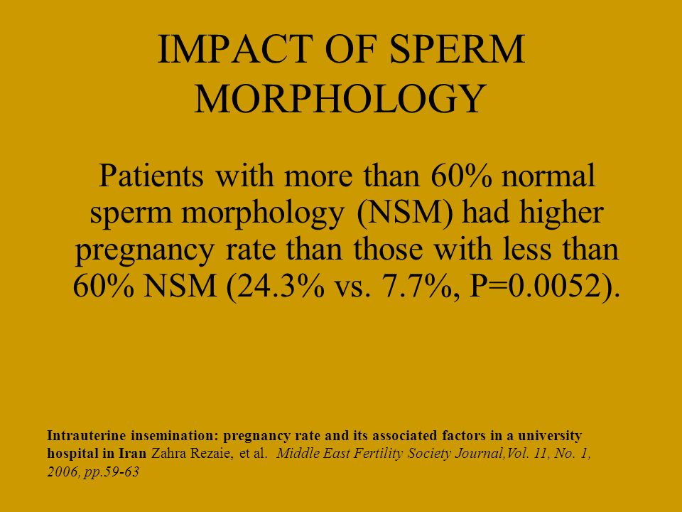 IMPACT OF SPERM MORPHOLOGY