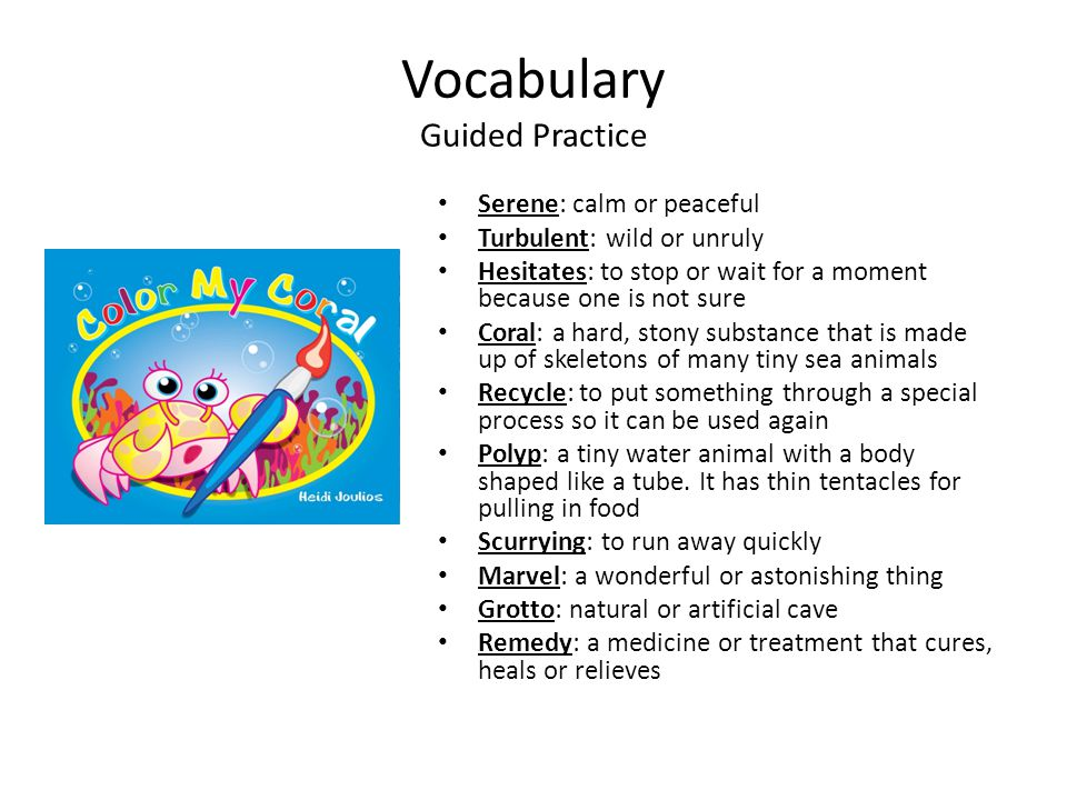 Vocabulary Guided Practice