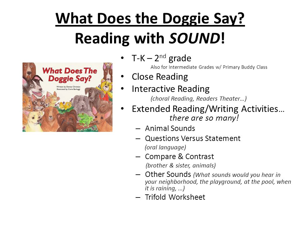 What Does the Doggie Say Reading with SOUND!
