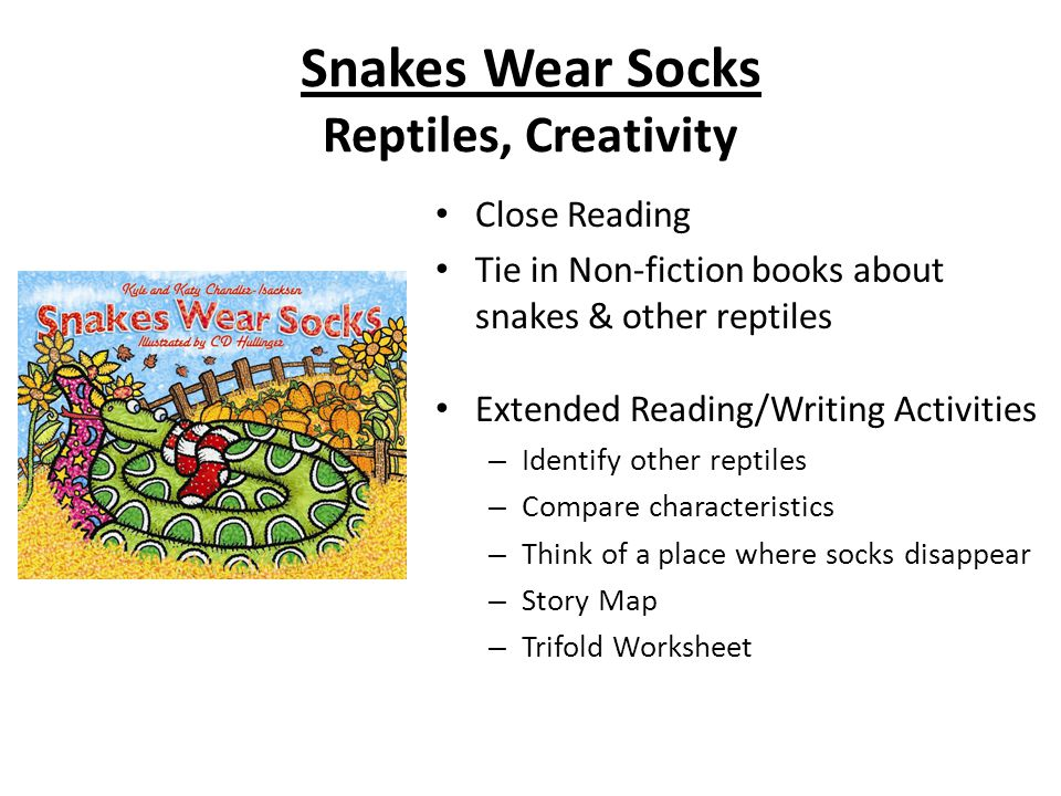 Snakes Wear Socks Reptiles, Creativity