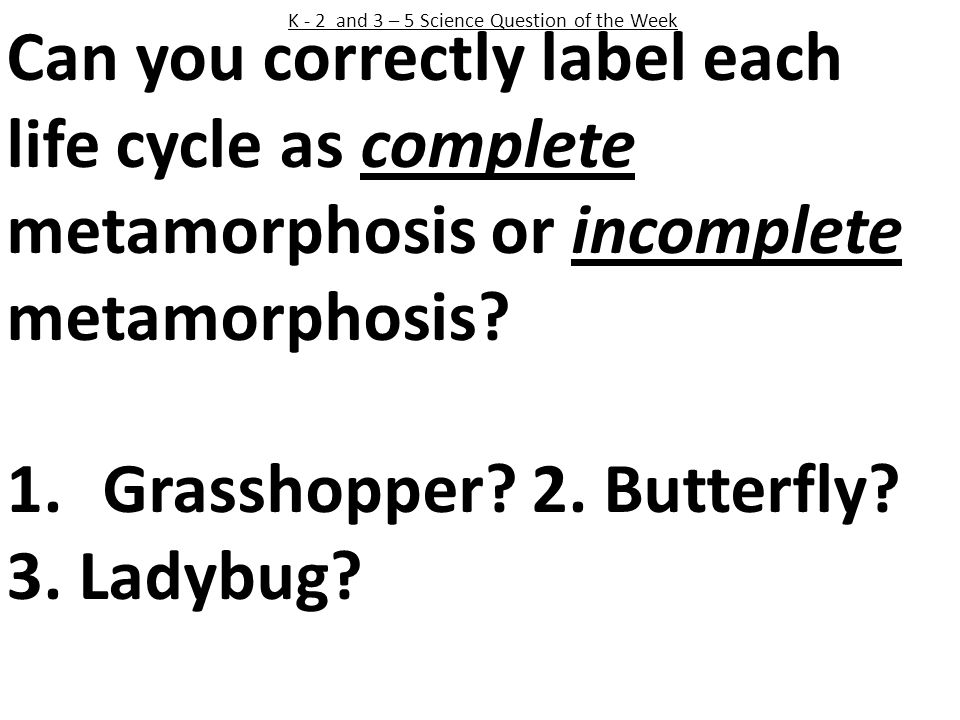 K - 2 and 3 – 5 Science Question of the Week