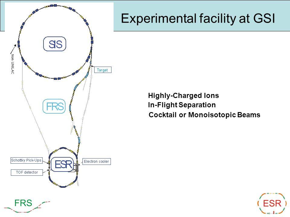 Experimental facility at GSI
