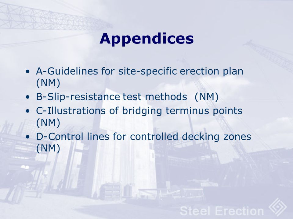 Appendices A-Guidelines for site-specific erection plan (NM)