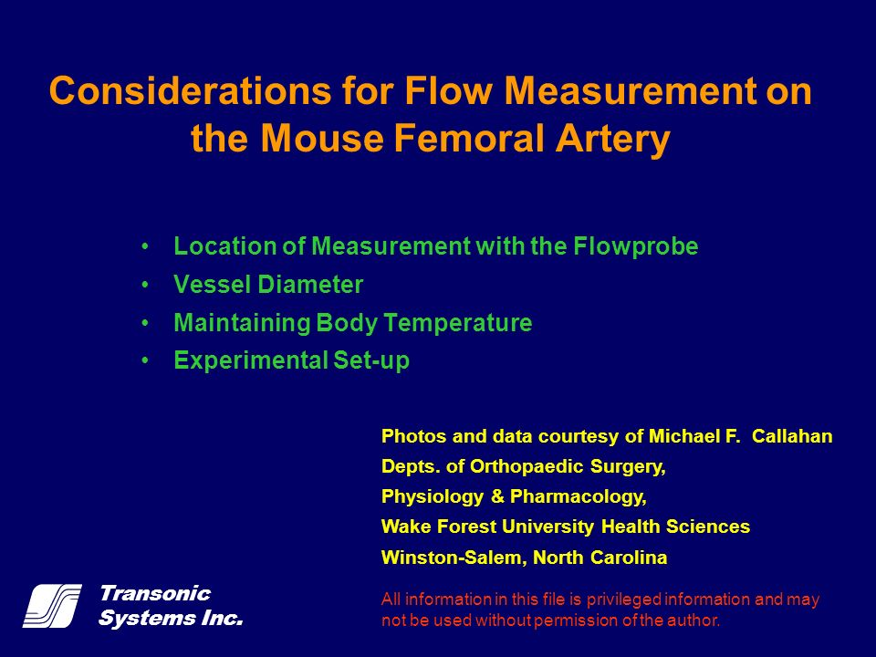 Considerations for Flow Measurement on the Mouse Femoral Artery