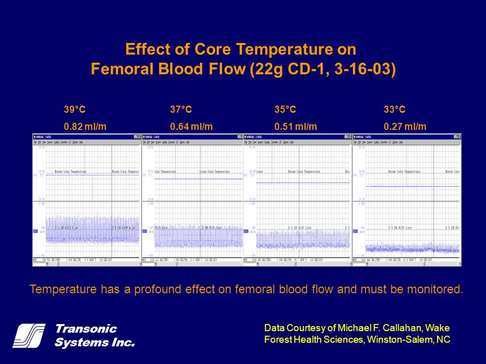 Effect of Core Temperature on Femoral Blood Flow (22g CD-1, 3-16-03)