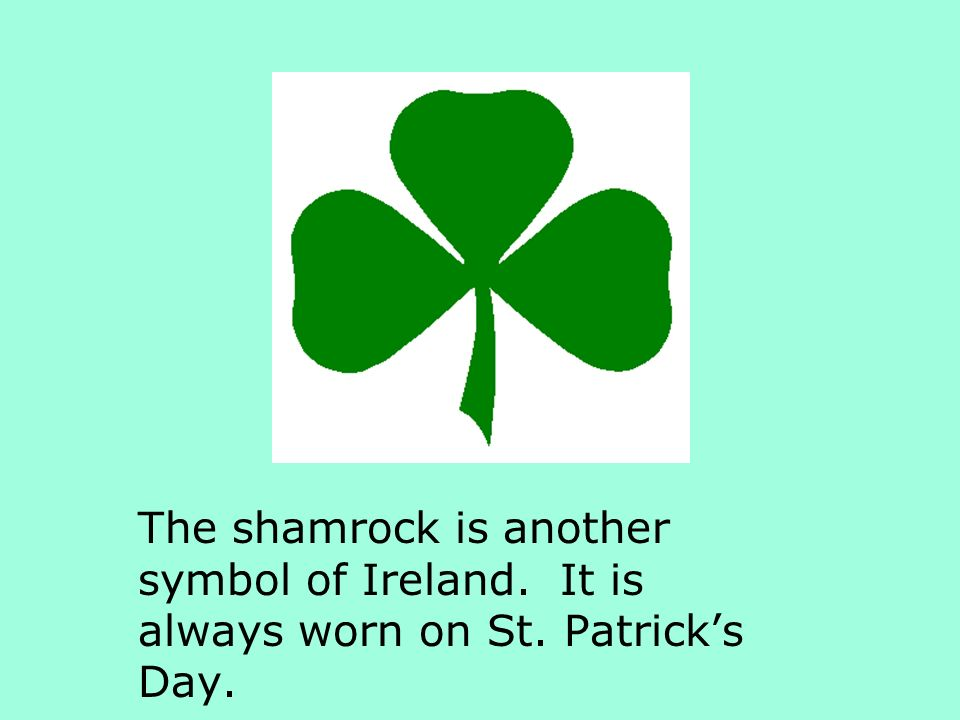 The shamrock is another symbol of Ireland. It is always worn on St