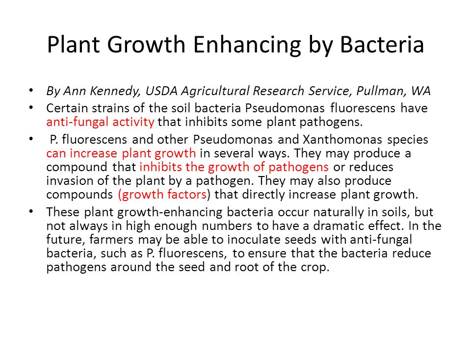 Plant Growth Enhancing by Bacteria