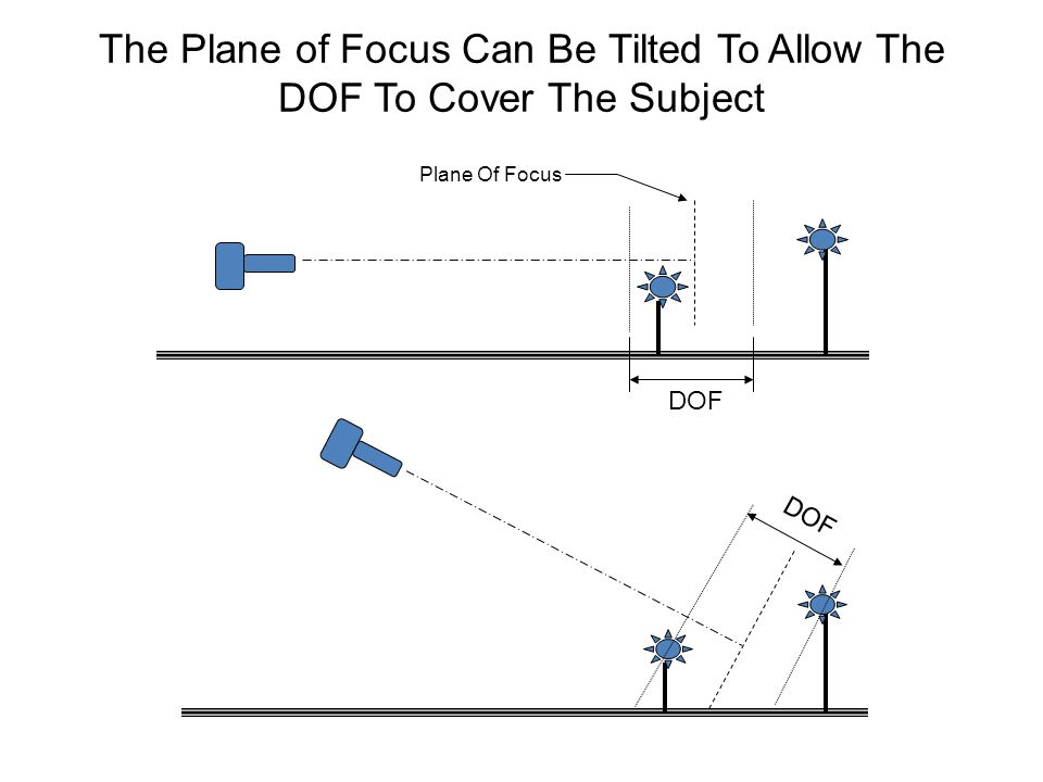 The Plane of Focus Can Be Tilted To Allow The DOF To Cover The Subject