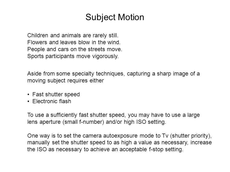 Subject Motion Children and animals are rarely still.