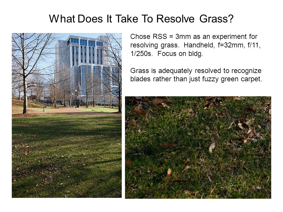 What Does It Take To Resolve Grass