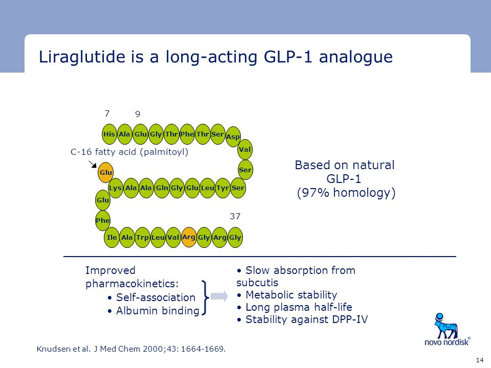Liraglutide is a long-acting GLP-1 analogue