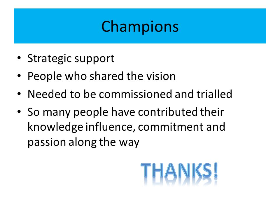 Thanks! Champions Strategic support People who shared the vision