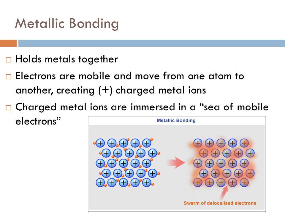 Metallic Bonding Holds metals together