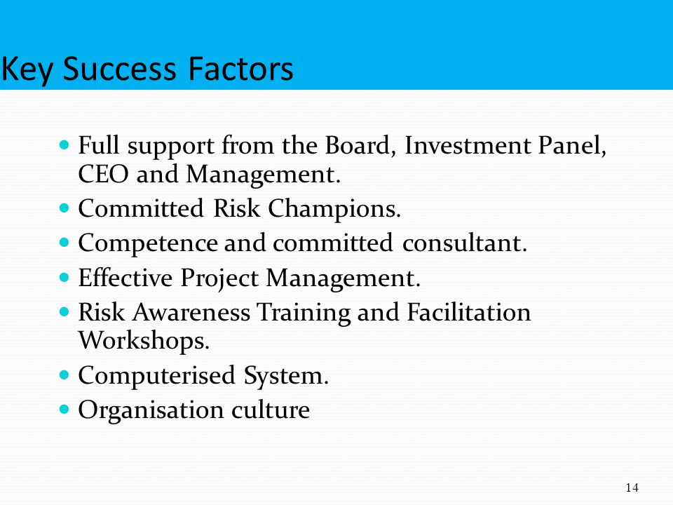 Key Success Factors Full support from the Board, Investment Panel, CEO and Management. Committed Risk Champions.
