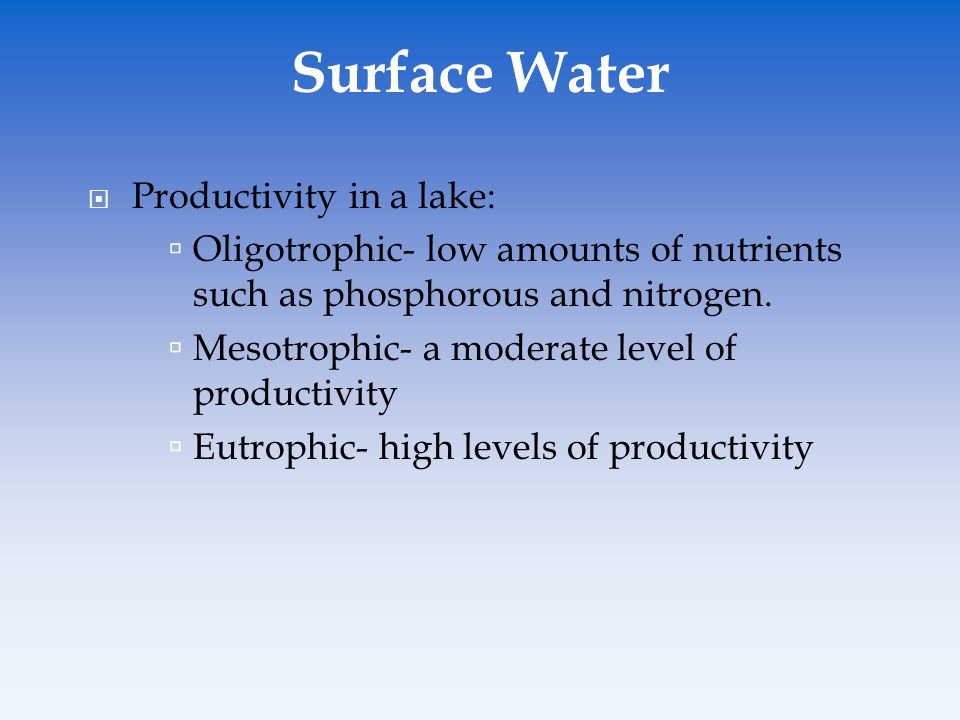 Surface Water Productivity in a lake: