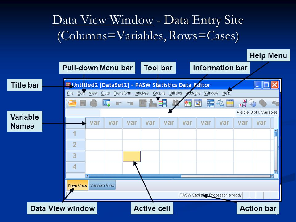 Data View Window - Data Entry Site (Columns=Variables, Rows=Cases)