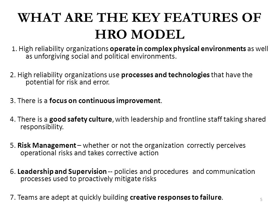 WHAT ARE THE KEY FEATURES OF HRO MODEL