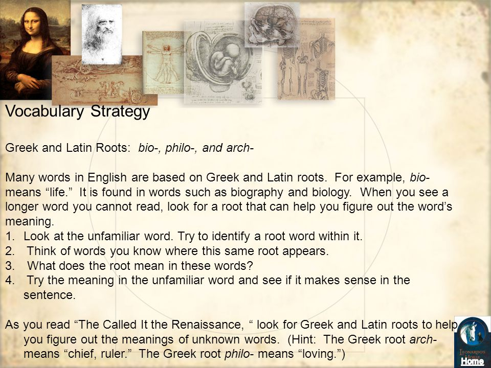 Vocabulary Strategy Greek and Latin Roots: bio-, philo-, and arch-