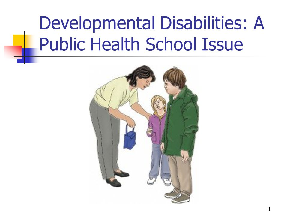 Developmental Disabilities: A Public Health School Issue